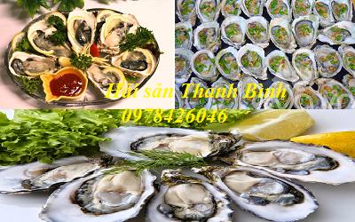 nhà hàng ngon biển hải tiến